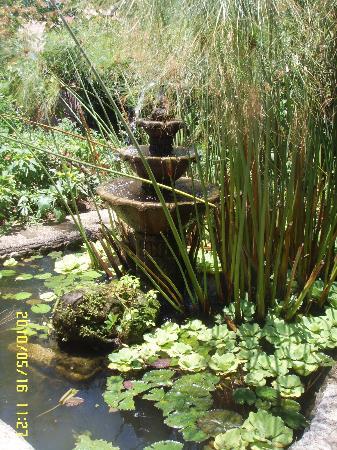 Sonya's Garden B&B: japanese gardens near the dining hall