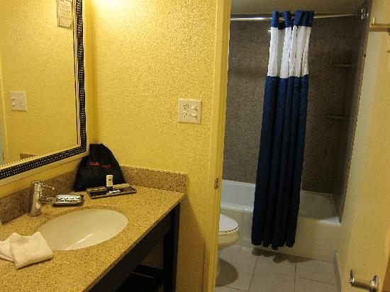 Coco Key Hotel and Water Park Resort: The toilet