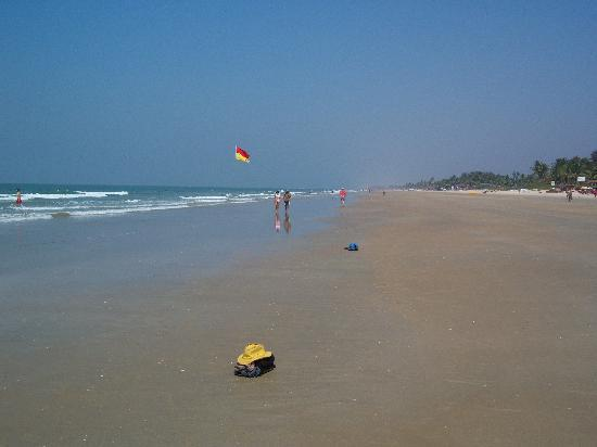 Benaulim Beach: The beach
