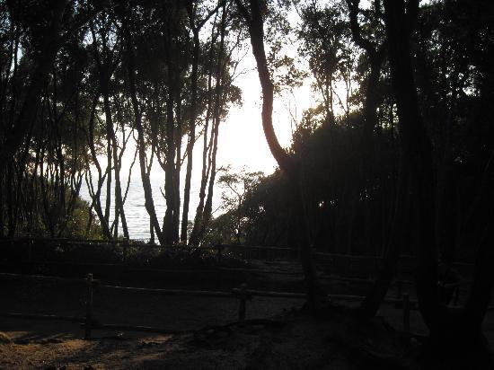 Agriturismo La Cianella: splendio sentiero per cala violina