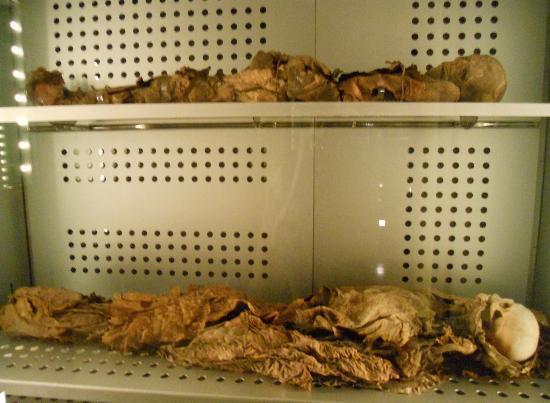 Museo de la Naturaleza y el Hombre: momies