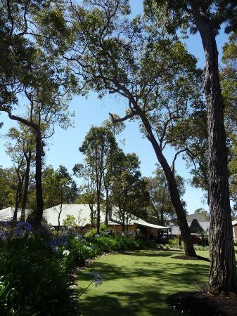 Clairault Streicker Estate: Garden