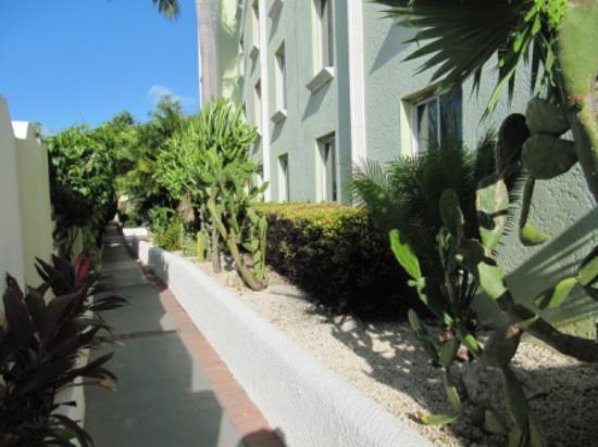 Brickell Bay Beach Club & Spa: Way to the pool area