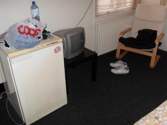 Budgethotel - Hotel-O-Theek De Zwaan: Frigo e TV