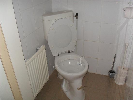 Budgethotel - Hotel-O-Theek De Zwaan: Toilette