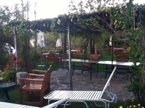 Isla Suasi Hotel : jardín isla Suasi