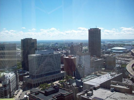 Buffalo In City Of