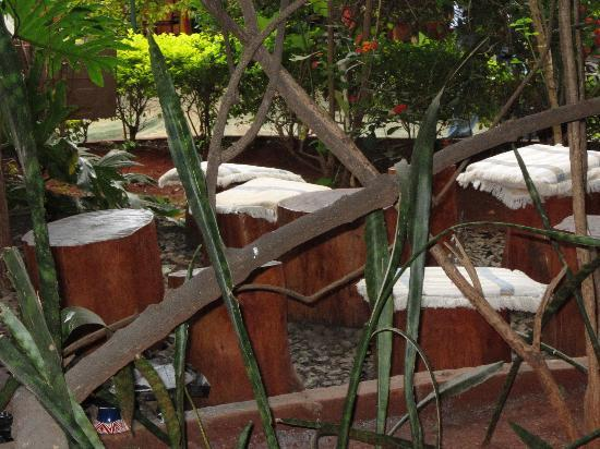 Habesha: Great garden setting