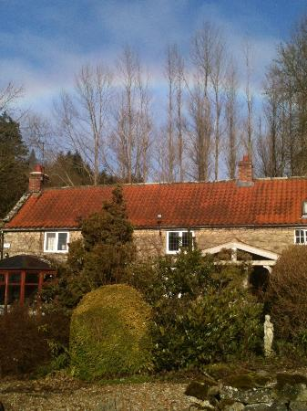 Carr House Farm Bed and Breakfast: idyllic