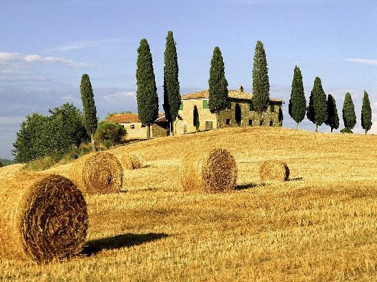 Walkabout Florence Tours: The Best of Tuscany Tour in One Day From Florence