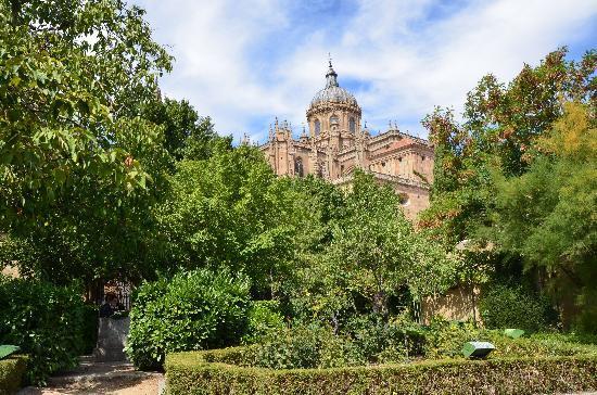 Foto de jard n el huerto de calixto y melibea salamanca huerto tripadvisor - Jardin de calisto y melibea salamanca ...