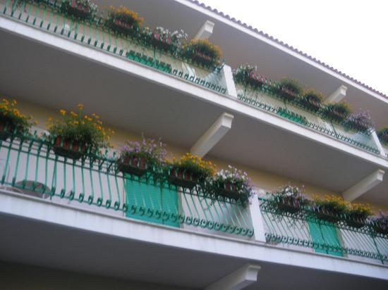 Hotel Eliseo Park's: L'arrière de l'hotel