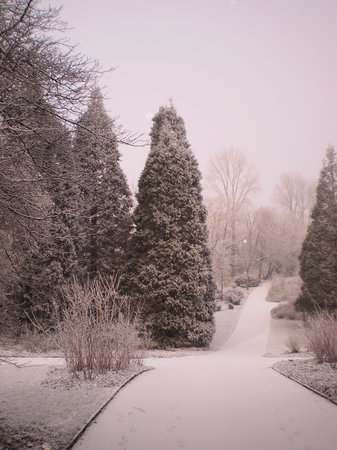 Dortmund, Duitsland: Winter 2012