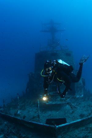 Starfish Diving : ьь