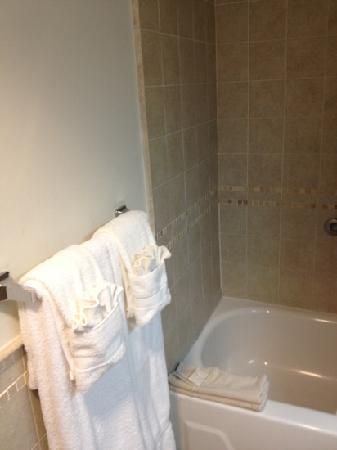 San Miguel Plaza Hotel: baño