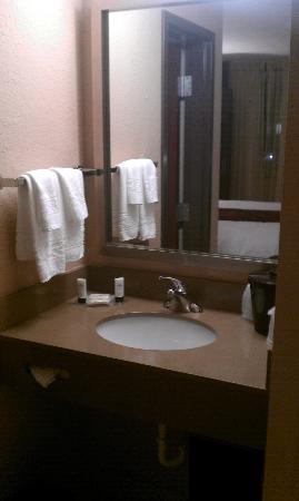 Fairfield Inn & Suites Dallas DFW Airport South/Irving: small sink area
