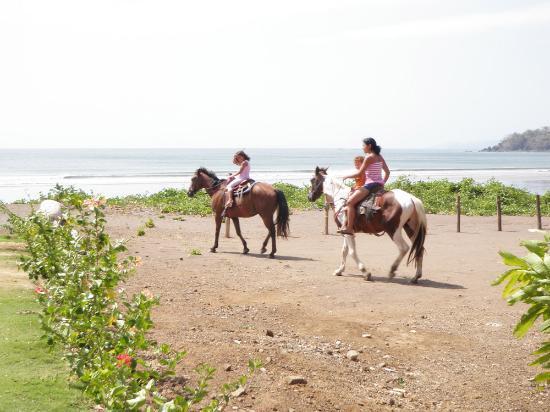 El Sitio Playa Venao: playa veno