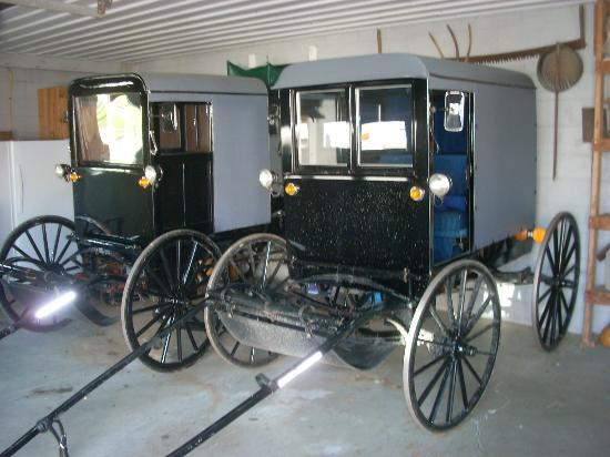 Mennonite Information Center : Two buggies at one of the stops on our tour.