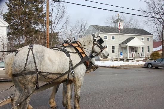 Remick Country Doctor Museum & Farm : Horse Drawn Carriage rides