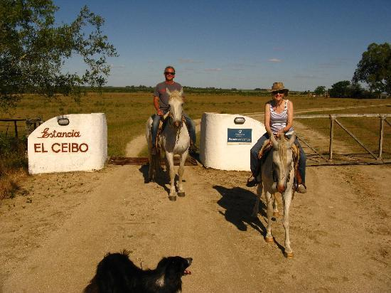 Florida, Uruguay: A late afternoon ride....