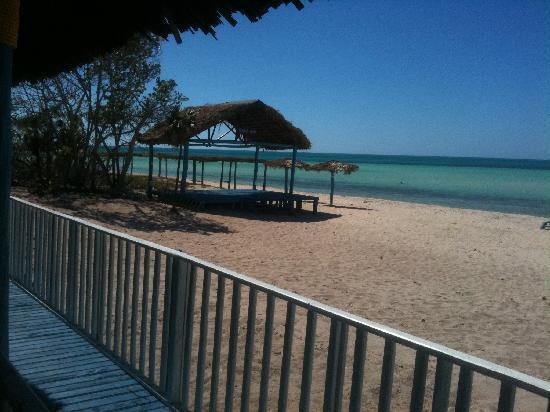 Memories Flamenco Beach Resort : At the shack looking towards resort