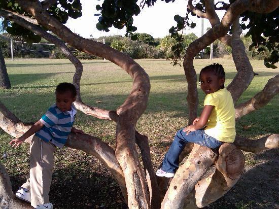 Cocoa Beach, FL: Kids at play