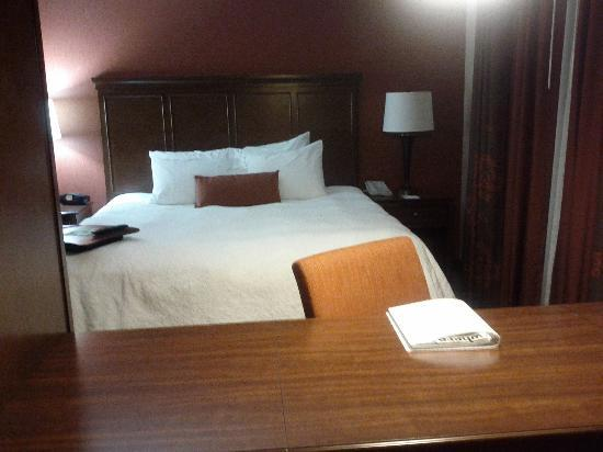 Hampton Inn by Hilton Edmonton/South: King Sized Bed
