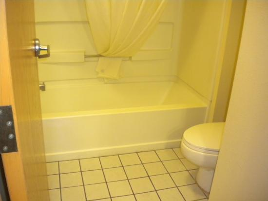 Baymont Inn and Suites Chattanooga: Bathroom