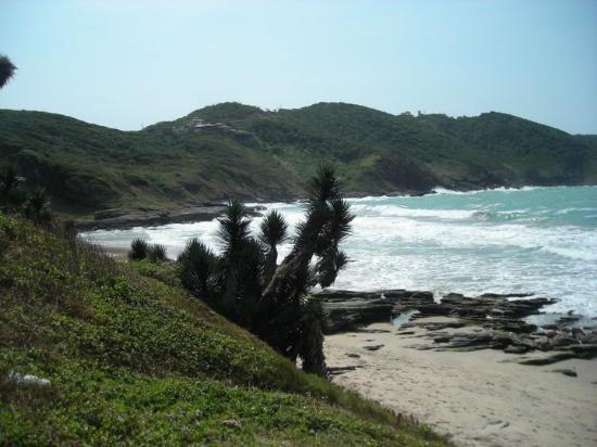Azeda Beach: Brava