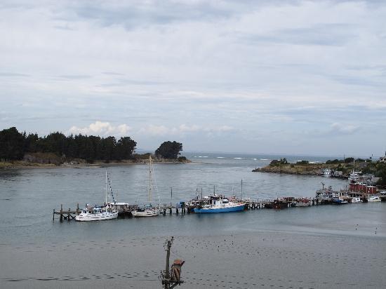 Riverton Bed and Breakfast: Fishing boats at Riverton