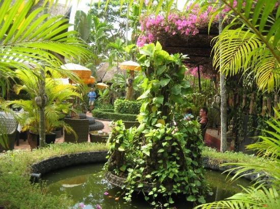 Bopha Siem Reap Boutique Hotel: Bakgarden