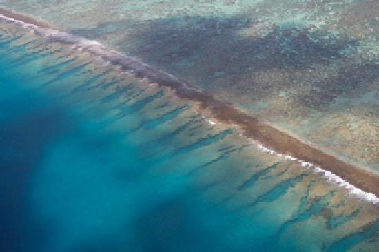Tahiti-Helicopters: barriere de corail