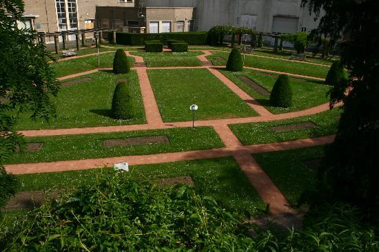 Citadel Park : Rose Park