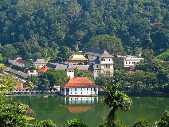 Kandy, Sri Lanka: Udawatte Kele - Backdrop for Temple of the Tooth