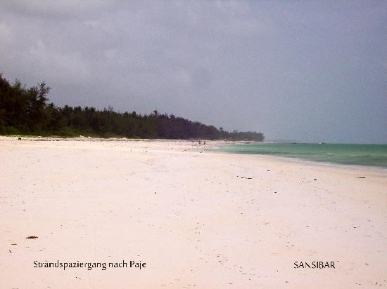Paje Beach: Paje