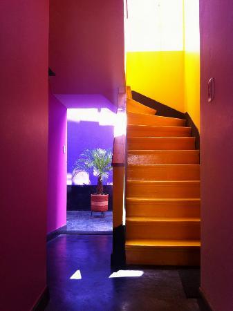 Hotel Casa Guadalupe: Entrada
