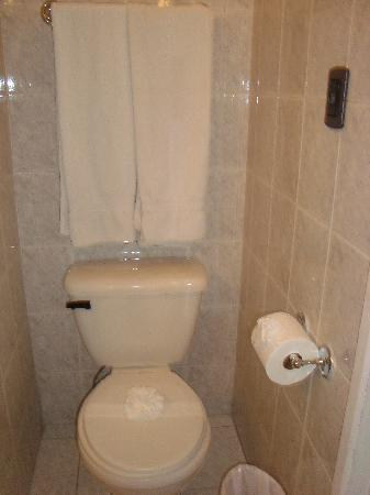 Hotel San Carlos: baño 2