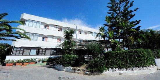 Hotel Villa Roxana