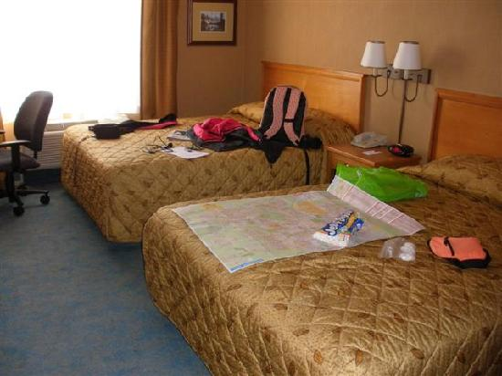 Econo Lodge Inn & Suites University : 2Q std room (#504)