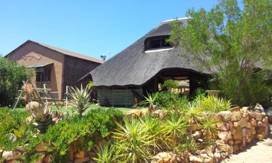 Gecko Creek Wildnerness Lodge: The Lappa