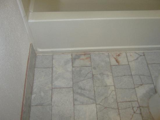 Quality Inn And Suites Gallup: Broked flood tiles