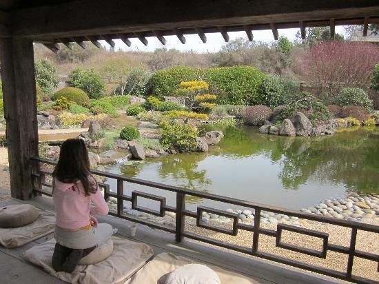Osmosis Day Spa Sanctuary: Osmosis Spa Tea Gardens