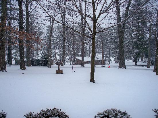 Woodloch Pines Resort : View outside of our Timberline room!