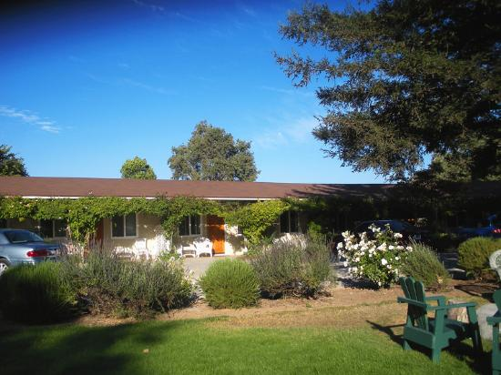 Meadowlark Inn by Solvang. One of the rose vine clas wings.