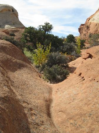 The Frying Pan Trail Capitol Reef National Park Ut Top