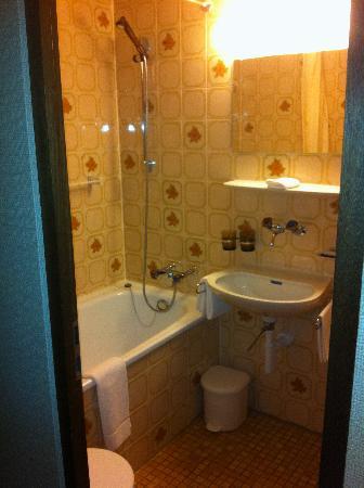 Alpenruhe Kulm Hotel: Rm 33 bathroom