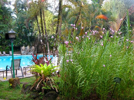 Villas Rio Mar: Grounds at Rio Mar