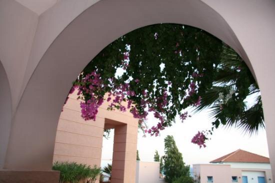Rodos Village Beach Hotel & Spa: .