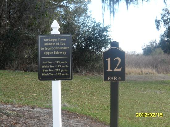 Brooksville Country Club: #12, beginning of the Quarry Holes