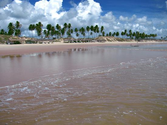 Massarandupio : praia